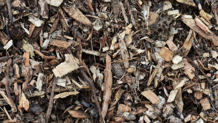 Story of the Wood Chip