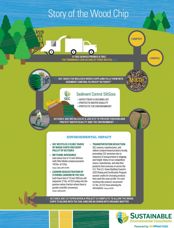 Story of the Wood Chip Infographic